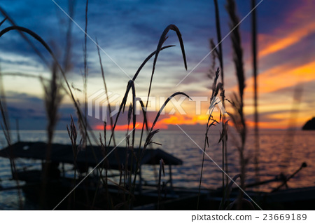 Photo of tropical sky at sunset.Seascape. Sun in 23669189