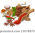 seasonings with condiment and spices 23678879