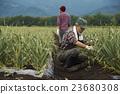 农场家庭父母工作风景 23680308