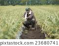 portrait, farming, portraits 23680741
