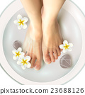 Pedicure Spa Illustration 23688126
