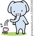 Elephants feeding water on flowers 23693390