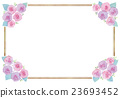 玫瑰 玫瑰花 觀賞植物 23693452