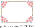 玫瑰 玫瑰花 觀賞植物 23693453