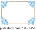 玫瑰 玫瑰花 觀賞植物 23693454