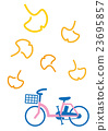 autumn, autumnal, bicycle 23695857
