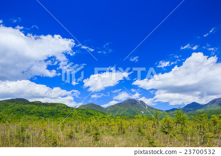 Nikko Spring's Senjogahara (Taro Mountain, San-Hat Mountain, Mikake) 23700532