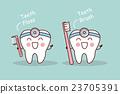 벡터, 이빨, 문자 23705391