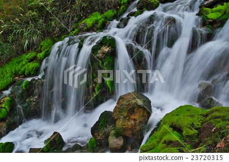 Chinazu Bomogoke Park 23720315