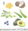 水果 食品 原料 23721863