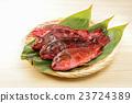 石九公 魚 鹹水魚 23724389