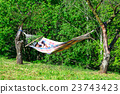 Woman reading a book on a hammock 23743423