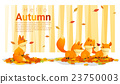 Hello autumn background with foxes 23750003