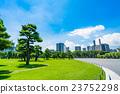 공원, 푸른, 녹색 23752298