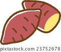 紅薯 番薯 地瓜 23752678