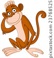 Monkey 23768525
