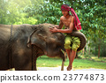 Best Friendship  Mahout with elephant 23774873