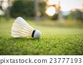 White Shuttlecock for badminton on green grass 23777193