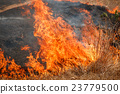 Fire burning dry grass field in Thailand 23779500