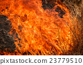 Fire burning dry grass field in Thailand 23779510