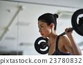 哑铃肌肉训练妇女 23780832