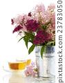 herbal tea and flowers 23783050