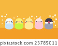 鸟儿 鸟 公鸡 23785011