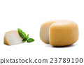 Yellow round cheese with a piece on white 23789190