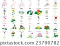 植物 植物学 植物的 23790782