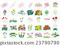 植物 植物学 植物的 23790790