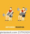 Bicep Exercises. Preacher Curl. 23791920