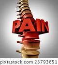 Human Spine Pain 23793651