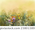 Watercolor painting wildflowers and soft leaves 23801389