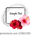 vector hibiscus flower. invitation card. 23802385
