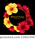 vector hibiscus flower. invitation card. 23802400