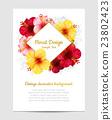 bloom, blossom, flower 23802423