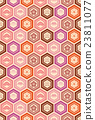 tortoise shell, vector, patterns 23811077