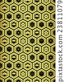 tortoise shell, vector, patterns 23811079
