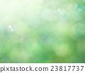 พื้นหลังธรรมชาติ 23817737