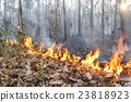 Destroyed by burning tropical forest ,Thailand 23818923