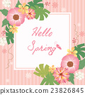 hello spring flower frame pink background 23826845