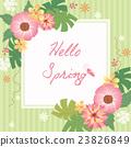hello spring flower frame 23826849