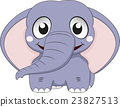 Cute Elephant Baby 23827513