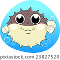Puffer fish With Bubles 23827520