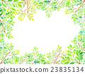 ใบต้นไม้สีน้ำ 23835134