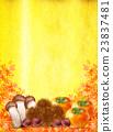 秋叶栗子蘑菇柿子 23837481