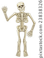 Cartoon Skeleton Waving 23838326