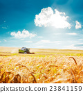 Combine Harvester on a Wheat Field. Agriculture. 23841159