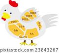 雞肉的名稱 23843267