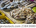 fresh fish in different sizes laying on a table 23843680